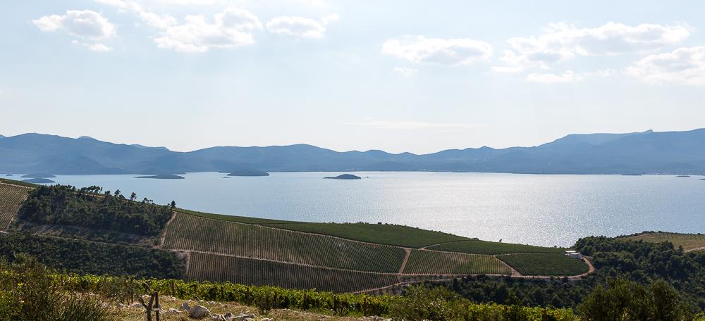 Dalmatian Coast-7044