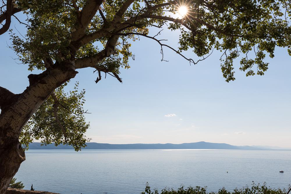 Dalmatian Coast-7064